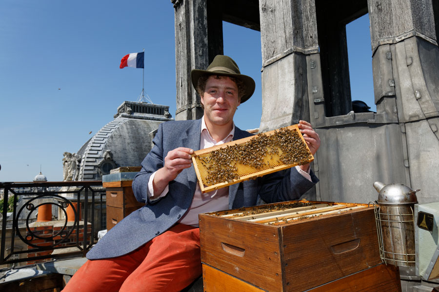 Audric with honeybees